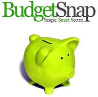 Budget_snap_logopig